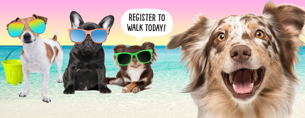 Paws at the Beach Festival & Walk